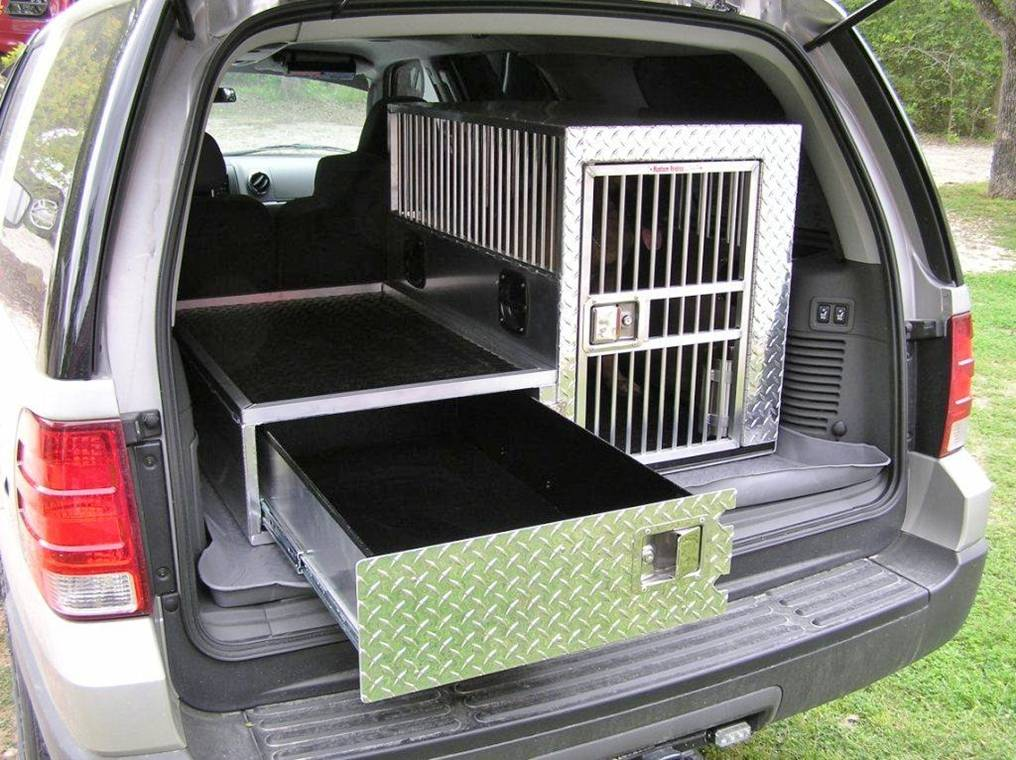 To transport of dogs